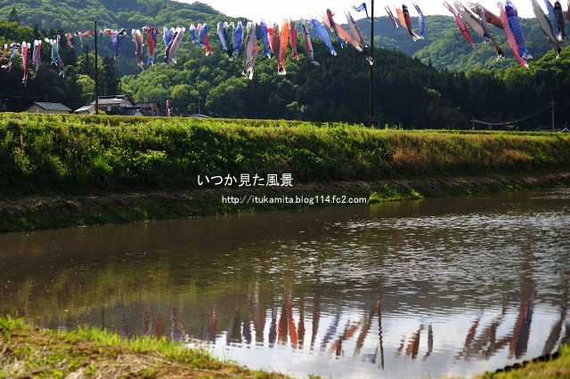 DS7_8755ri-s.jpg