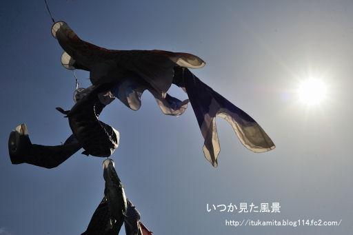 DS7_8763ri-ss.jpg