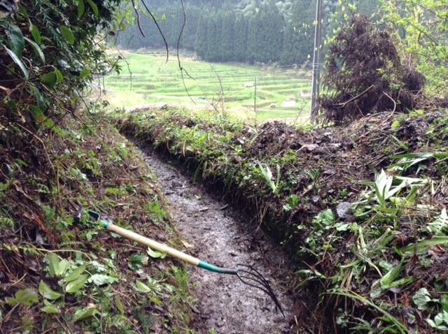 水路掃除4月19日フォーク