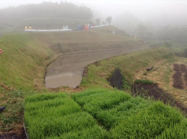横尾棚田の田植え前2015
