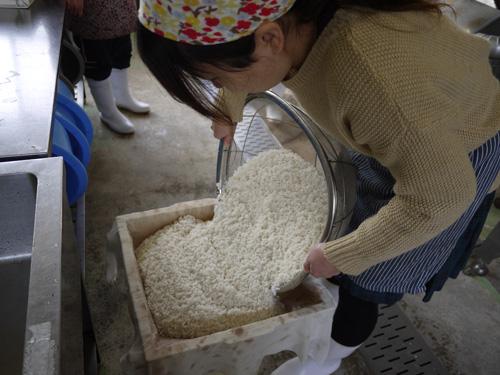 味噌づくり2015-2日目セイロ