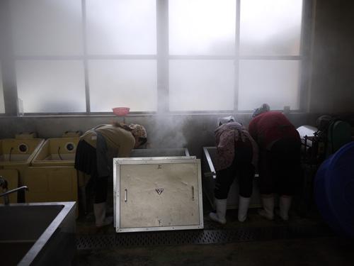 味噌づくり2015-2日目発酵器