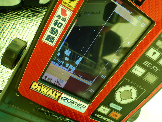 P1340358.jpg