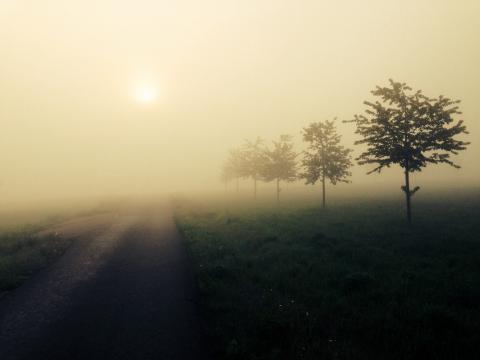 霧の中に続く道_convert_20150114215051