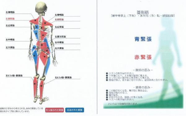 骨骨後ろ_convert_20150628214100