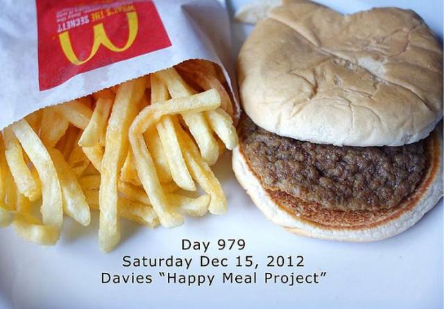 ほんとに食べても大丈夫?マクドナルドのハンバーガーとポテトを979日放置した結果