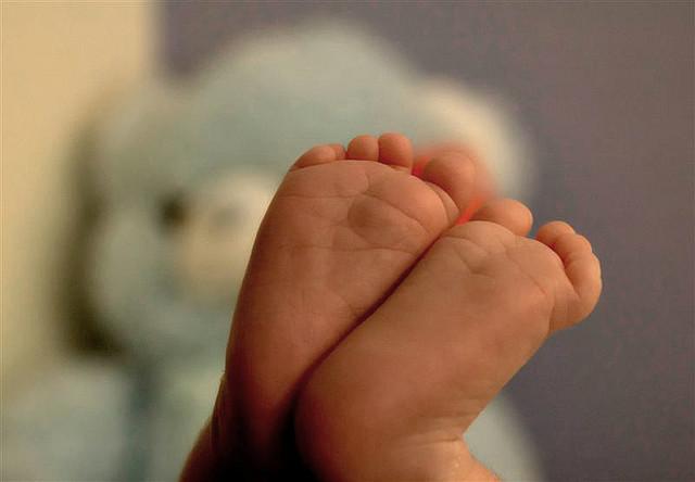 1歳からは一生縮み続ける!?生後7ヶ月で最大の大きさになる器官とは