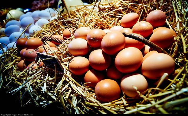 ゆで卵と生卵を簡単に見分ける方法
