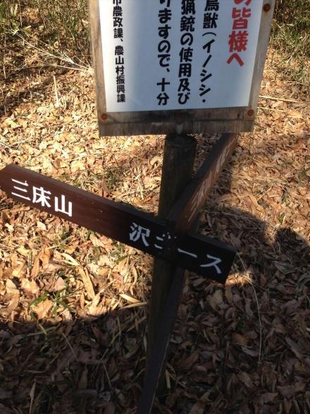 ittoko (11)