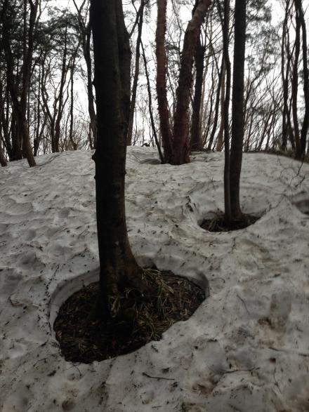 黒滝山 (3)_R