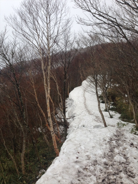 黒滝山 (5)_R