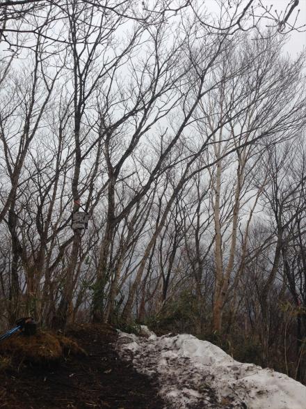 黒滝山 (6)_R