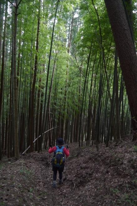 日留賀岳 (30)