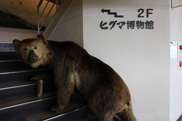 2014北海道旅行:のぼりべつクマ牧場 ヒグマ博物館