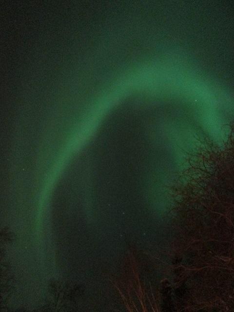 2015カナダ:オーロラビレッジ オーロラ3