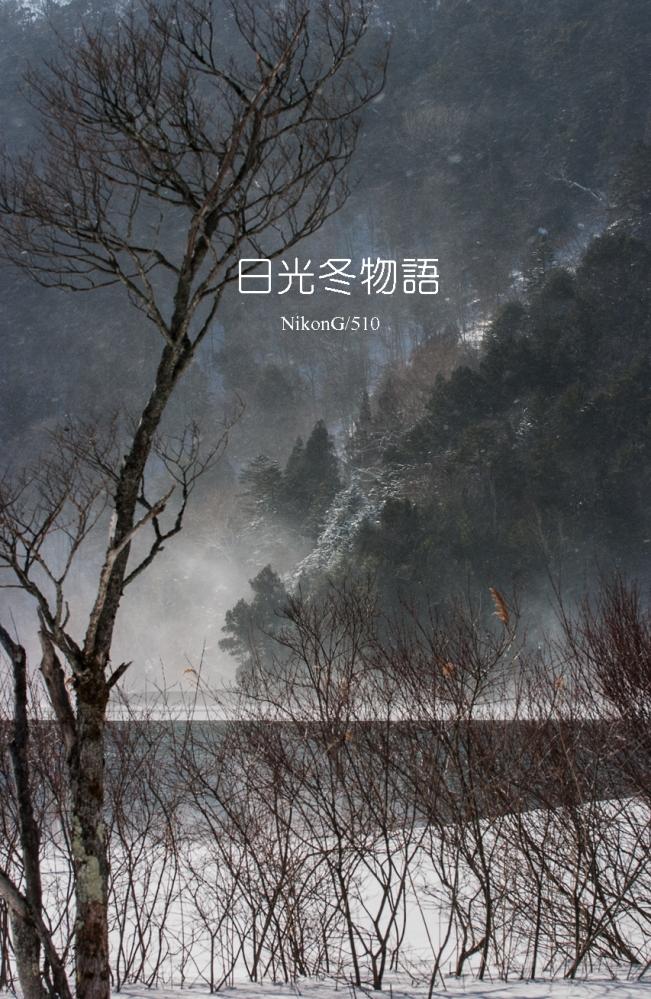 2015 01 12 日光冬物語 2S
