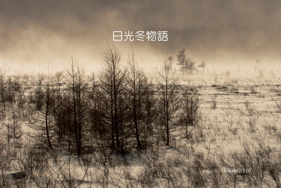 2015 01 12 日光冬物語 5S