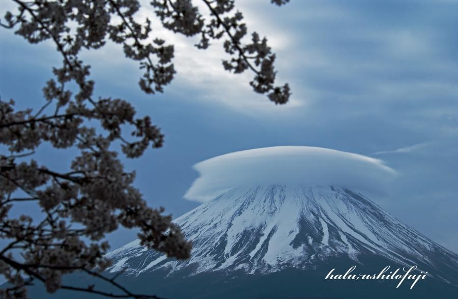 精進湖 傘2S