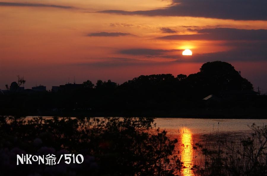花山5 D1x filtered