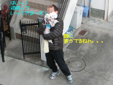 b0046.jpg