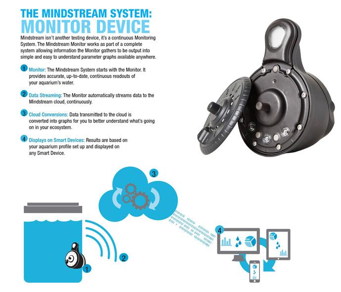 Mindstream.jpg