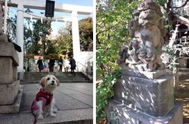 赤坂日枝神社~乃木神社~赤坂氷川神社