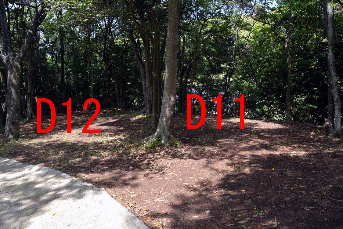 50-2015_0522_114453.jpg