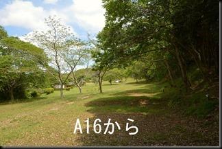 50-2015_0522_115014_thumb1
