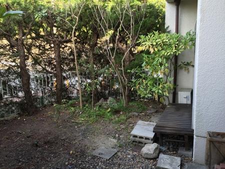 Tezukayama13.jpg