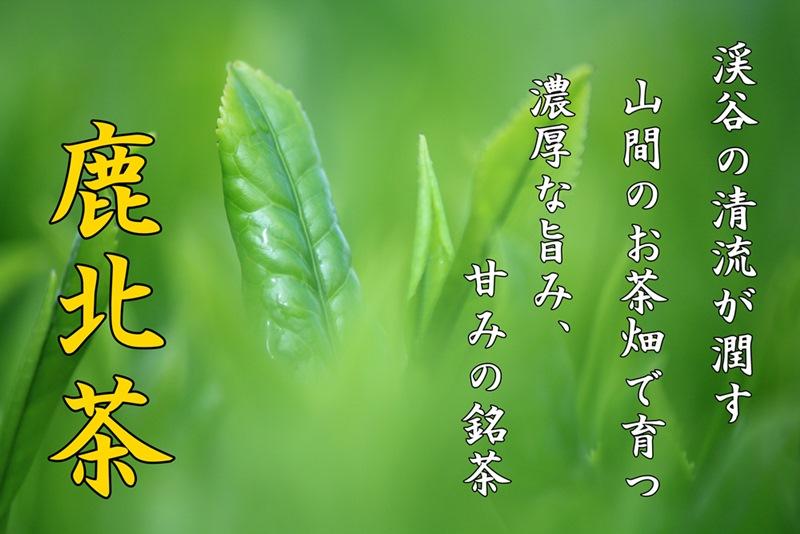 鹿北茶ポスター1-1