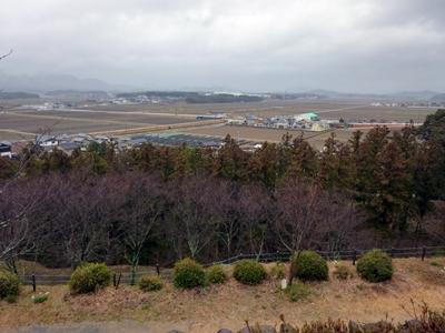 田丸城14