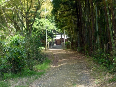 龍子山城05