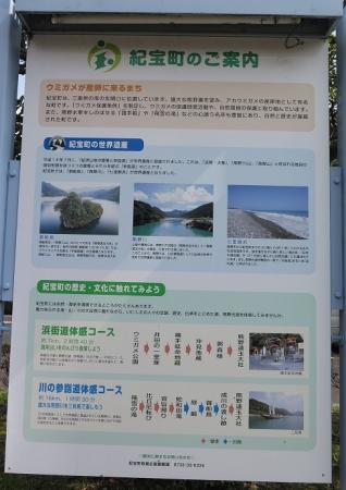 道の駅『紀宝町ウミガメ公園』