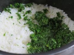 ウコギ飯の作り方5