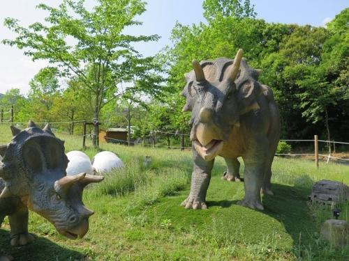 フルーツパーク トリケラトプス