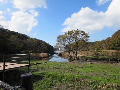 小網代の森河口