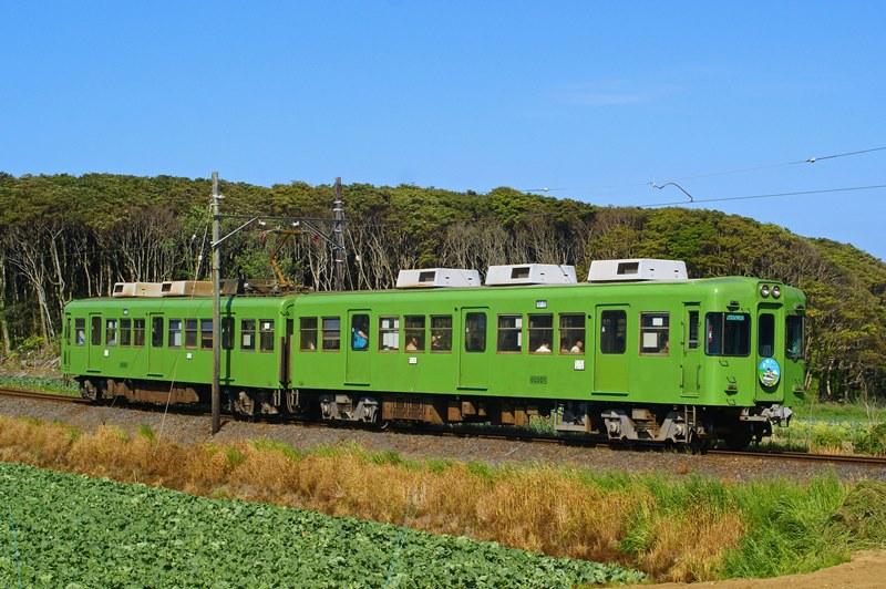 2015年5月4日 海鹿島~君ヶ浜にて (6)