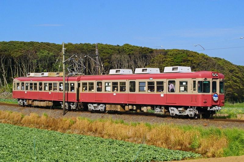 2015年5月4日 海鹿島~君ヶ浜にて (9)