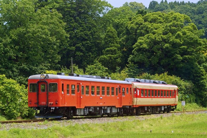 2015年5月31日 総元~西畑にて (1)