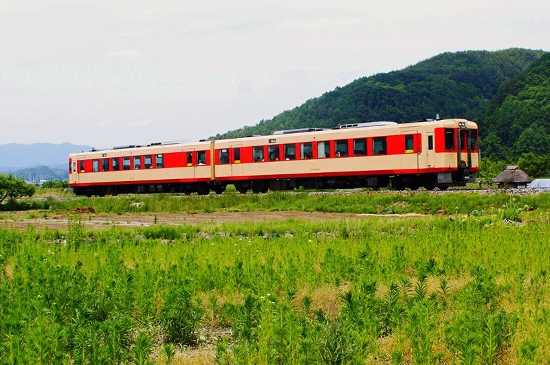 2015年6月2日 臼田~青沼にて