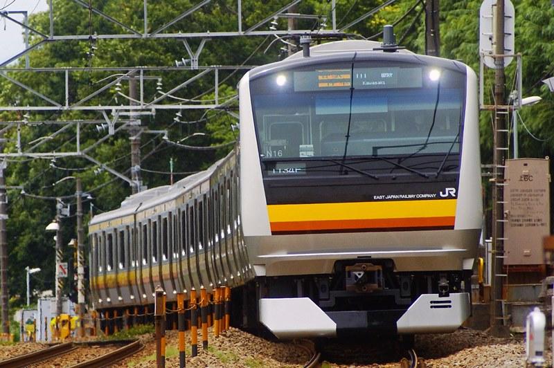 2015年6月11日 矢川~谷保にて (1)