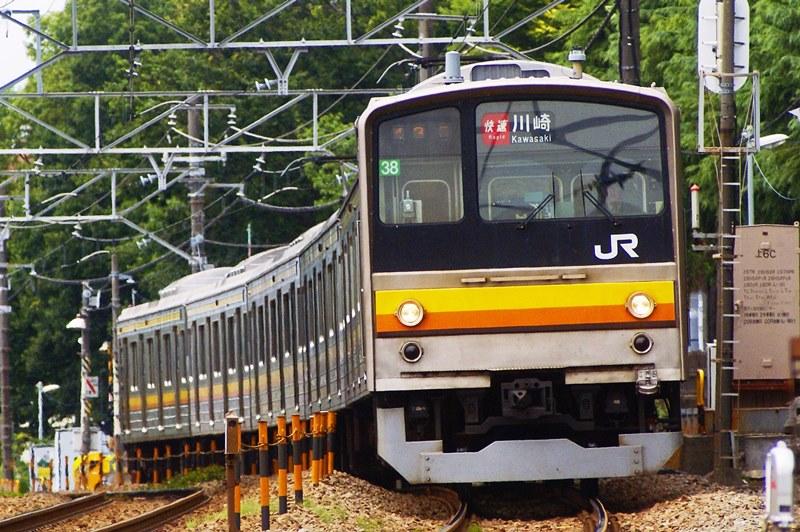 2015年6月11日 矢川~谷保にて (2)