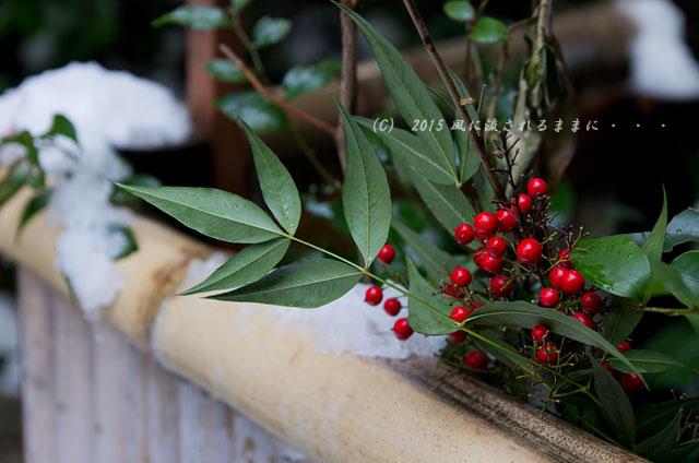京都・青蓮院門跡(しょうれんいんもんぜき)の雪景色12