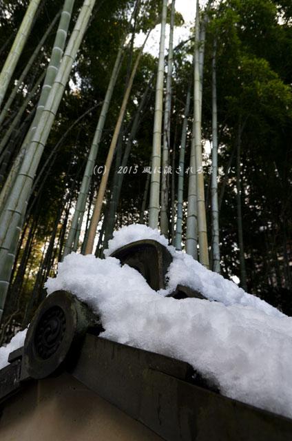 京都・青蓮院門跡(しょうれんいんもんぜき)の雪景色13