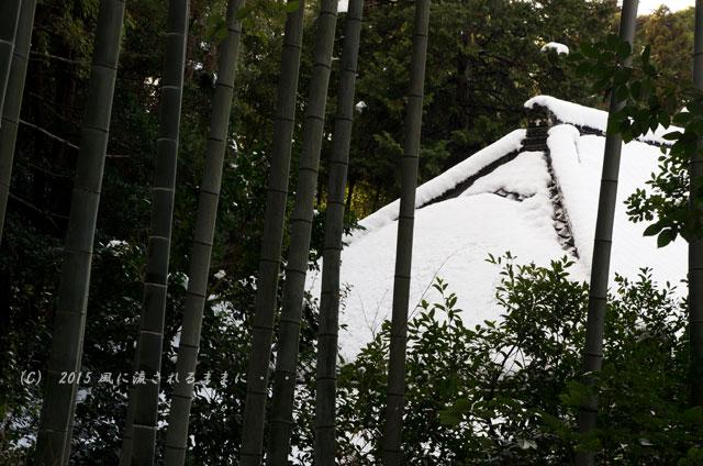 京都・青蓮院門跡(しょうれんいんもんぜき)の雪景色14