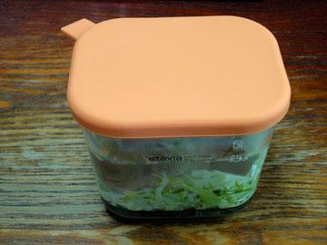 漬け物容器でキャベツの塩漬け