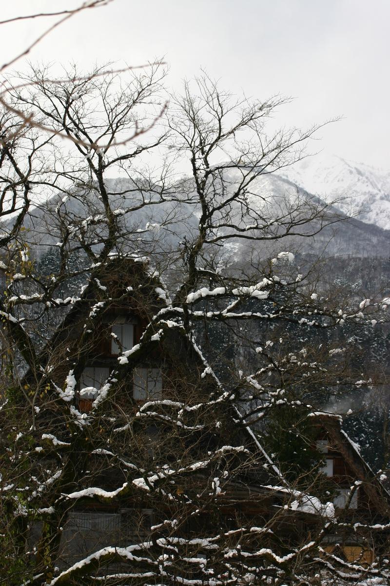 白川郷~幻想が息づく村~ 茅葺屋根の家が並ぶ光景は、まるで昔読んだ民話の世界のよう  ⑥