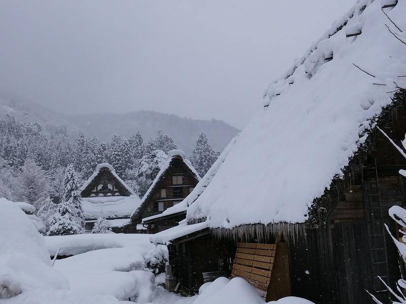 新年明けましておめでとうございます。お陰様で、大白川温泉 しらみずの湯も新年を迎えることができました。 ⑧