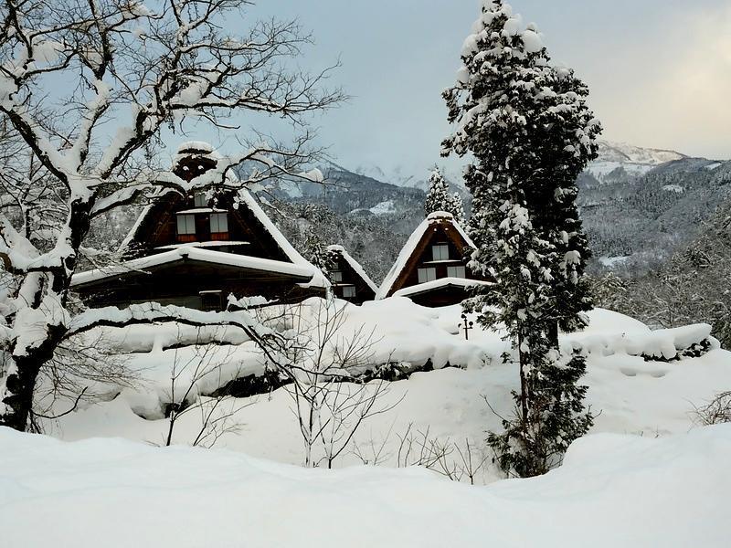 1月の3連休 2015年1月9日(金)~12日(月) 冬のお出かけは楽しみ方色々 ②