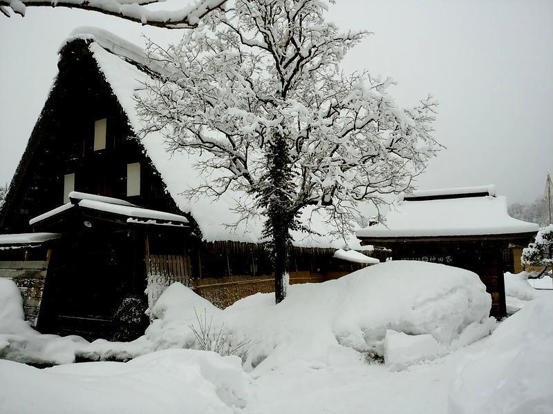 1月の3連休 2015年1月9日(金)~12日(月) 冬のお出かけは楽しみ方色々 ⑦